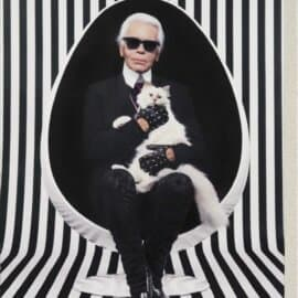 Akik inspirálnak, Karl Lagerfeld